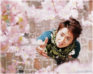 Wp_ohno13_sq